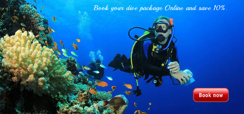 Dive Packages Discounts